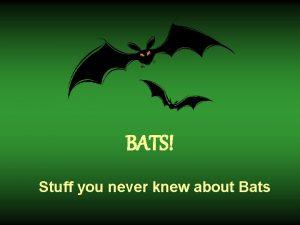 BATS Stuff you never knew about Bats Is