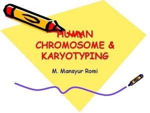 HUMAN CHROMOSOME KARYOTYPING M Mansyur Romi CHROMOSOME The
