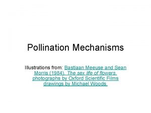 Pollination Mechanisms Illustrations from Bastiaan Meeuse and Sean