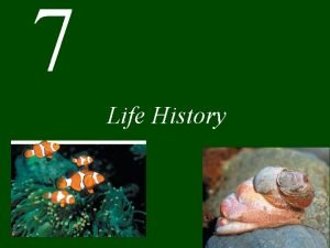 7 Life History Chapter 7 Life History CONCEPT