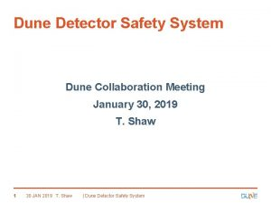 Dune Detector Safety System Dune Collaboration Meeting January