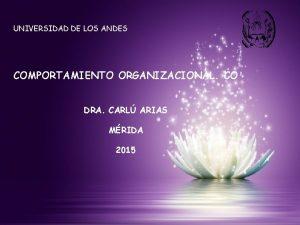 UNIVERSIDAD DE LOS ANDES COMPORTAMIENTO ORGANIZACIONAL CO DRA