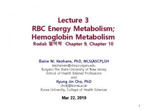 Lecture 3 RBC Energy Metabolism Hemoglobin Metabolism Rodak