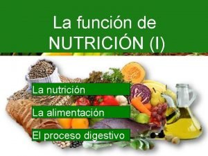 La funcin de NUTRICIN I La nutricin La