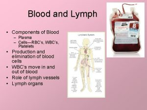 Blood and Lymph Components of Blood Plasma CellsRBCs