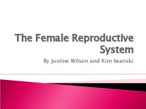 The Female Reproductive System By Justine Wilson and