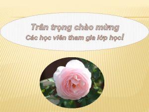 Trn trng cho mng Cc hc vin tham