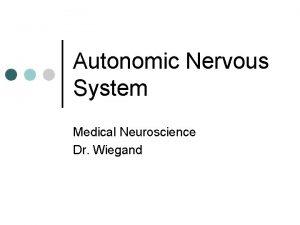 Autonomic Nervous System Medical Neuroscience Dr Wiegand Autonomic