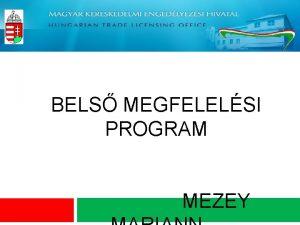 BELS MEGFELELSI PROGRAM MEZEY Bels Megfelelsi Program BMP