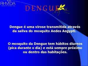 sade em tempo real DENGUE Dengue uma virose