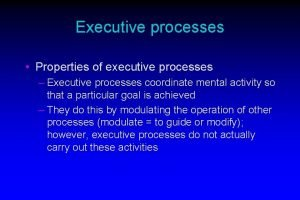 Executive processes Properties of executive processes Executive processes