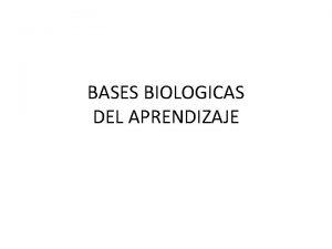 BASES BIOLOGICAS DEL APRENDIZAJE BASES BIOLOGICAS DEL APRENDIZAJE