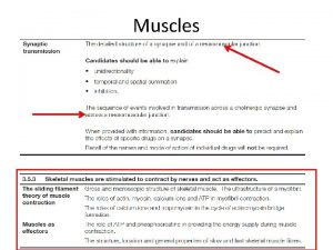 Muscles Muscles Muscle tissue is made up of