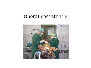 Operatieassistentie Wat moet je kennenkunnen De paraveterinair assisteert