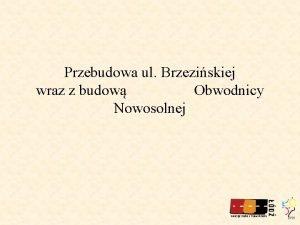 Przebudowa ul Brzeziskiej wraz z budow Obwodnicy Nowosolnej