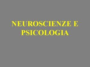 NEUROSCIENZE E PSICOLOGIA Gli strumenti I neuroscienziati cercano
