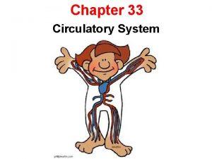 Chapter 33 Circulatory System 33 1 The Circulatory