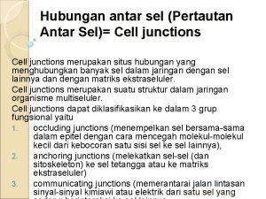 Hubungan antar sel Pertautan Antar Sel Cell junctions