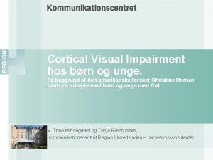 Cortical Visual Impairment hos brn og unge P