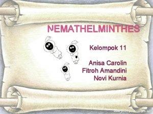 NEMATHELMINTHES Kelompok 11 Anisa Carolin Fitroh Amandini Novi