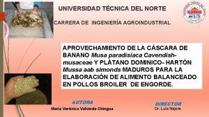 UNIVERSIDAD TCNICA DEL NORTE CARRERA DE INGENIERA AGROINDUSTRIAL
