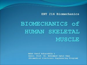 ENT 214 Biomechanics BIOMECHANICS of HUMAN SKELETAL MUSCLE