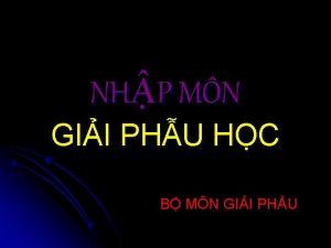 NHP MN GII PHU HC B MN GII