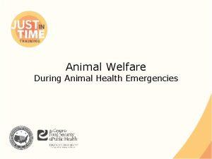 Animal Welfare During Animal Health Emergencies Animal Welfare
