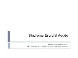 Sndrome Escrotal Agudo Andrs Felipe Gutirrez Rojas Mdico