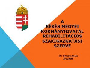 A BKS MEGYEI KORMNYHIVATAL REHABILITCIS SZAKIGAZGATSI SZERVE Dr