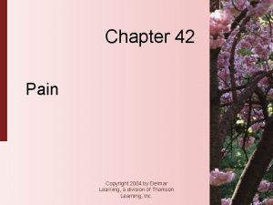 Chapter 42 Pain Copyright 2004 by Delmar Learning