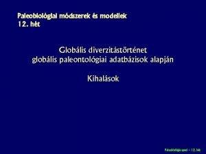 Paleobiolgiai mdszerek s modellek 12 ht Globlis diverzitstrtnet
