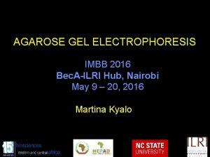 AGAROSE GEL ELECTROPHORESIS IMBB 2016 Bec AILRI Hub
