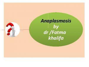 Anaplasmosis by dr Fatma khalifa Synonyms Bovine Anaplasmosis