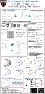 Linear Dimensionality Reduction Using the Sparse Linear Model