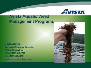 Avista Aquatic Weed Management Programs David Armes Terrestrial