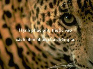 Hnh phc ph thuc vo cch nhn nhn