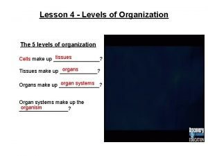 Lesson 4 Levels of Organization The 5 levels