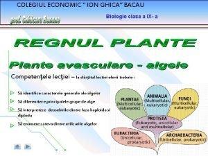COLEGIUL ECONOMIC ION GHICA BACAU Biologie clasa a