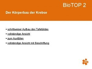 Bio TOP 2 Der Krperbau der Krebse schrittweiser