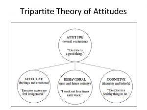 Tripartite Theory of Attitudes Most books on attitudes