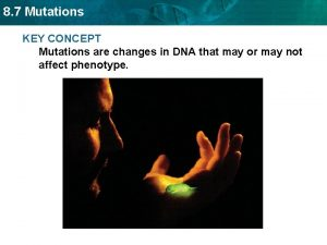 8 7 Mutations KEY CONCEPT Mutations are changes