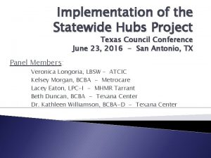 Implementation of the Statewide Hubs Project Texas Council