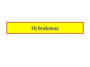Hybridomas Hybrid Cell Lines Normal Cells Are Fused