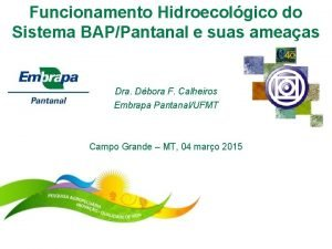 Funcionamento Hidroecolgico do Sistema BAPPantanal e suas ameaas