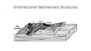 Unidirectional Sedimentary Structures Strategy Relate sedimentary characteristics of
