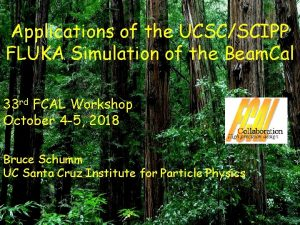 Applications of the UCSCSCIPP FLUKA Simulation of the