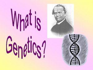 Heredity Genetics Heredity the passing of traits from