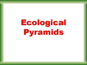 Ecological Pyramids Ecological Pyramids Instead of representing trophic