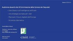 Roma 772020 Audizione davanti alla IX Commissione della